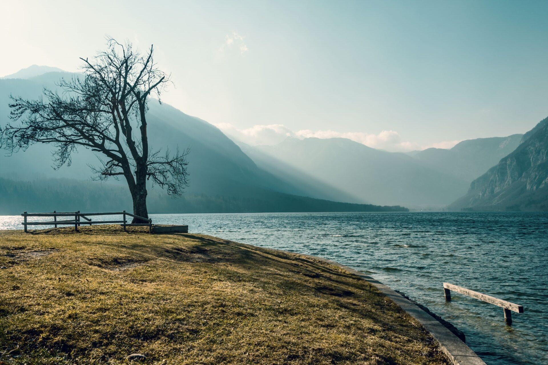 Озеро Бохинь. Словения.