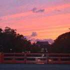 Гуляя поулицам, Киото часть 1