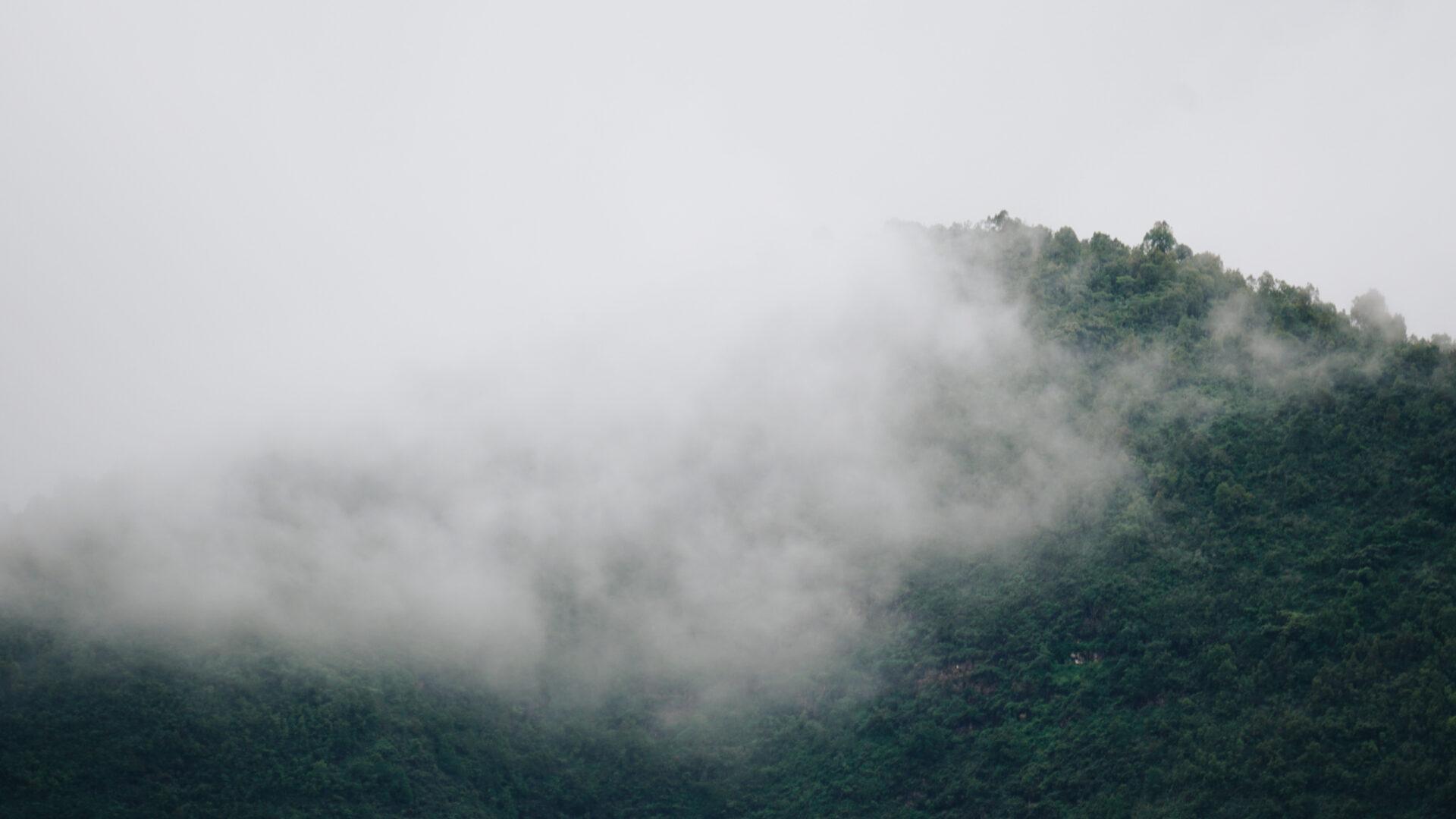 Килиманджаро вдекабре, сафари ипляжный отдых— часть 2